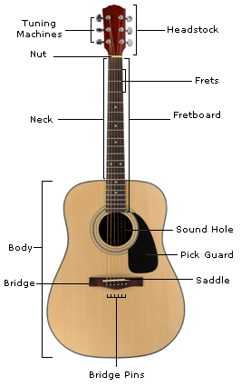 Buying an Acoustic Guitar for a Beginner - The Music Rooms ...