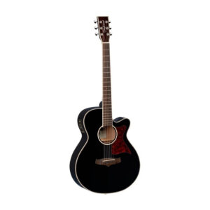 Tanglewood TW4BK Winterleaf Electro Acoustic W/Gig Bag and a Free Lesson