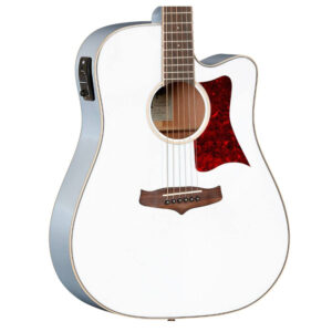 Tanglewood – TW5 Winterleaf Electro Acoustic W/Gig Bag and a Free Lesson