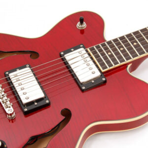 Hofner – Verythin Deluxe HCT-VTH-D-TR W/Gig Bag and a Free Lesson