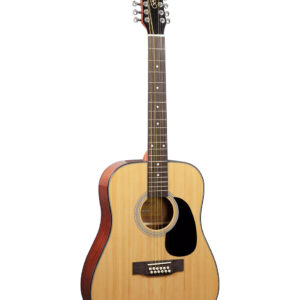 Acoustic Guitar 12 String