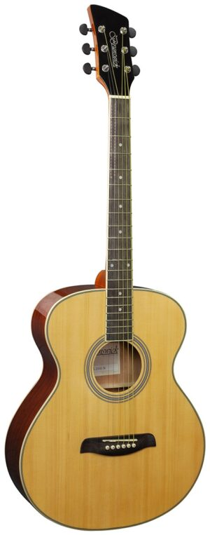 Brunswick Grand Auditorium Natural Gloss – Left Handed W/Gig Bag and a Free Lesson