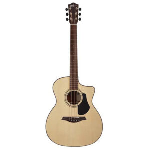 Mayson Elementary Series ESM10CE W/Gig Bag and a Free Lesson