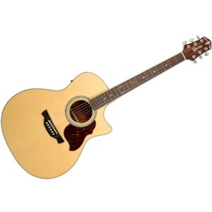 Crafter GAE-6 W/Gig Bag and a Free Lesson